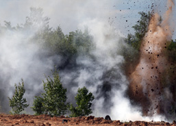 Panoramic view of the blow of an explosion in the forest.