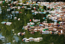 Plastic waste of all kinds float at the water surface.