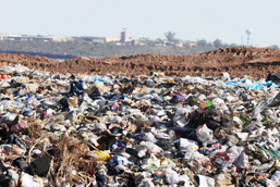 A pile of waste in an open-air dumpsite.
