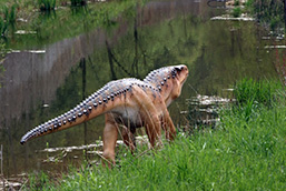 A dinosaur moves away from the camera as it walks along a stream.