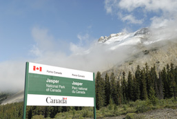 A panoramic view of a section of the Jasper National Park with, in the foreground, a road sign indicating the Park's entrance.