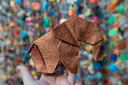 78,000 Origami Elephants Invade the Bronx Zoo