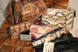 Objects made from snake anatomical parts: python skin, suit, purses, wallets, belt.